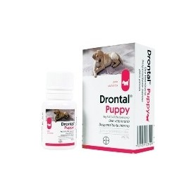 Drontal Puppies Jbe