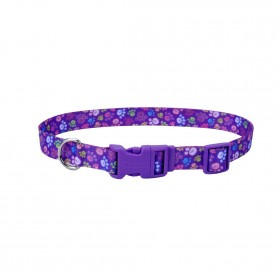 "Collar Coastal Style Special Paws 3/4""X14""-20"""