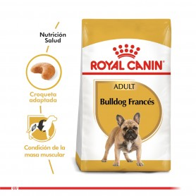 Royal Canin BullDog Francés Adulto 7.5 kg