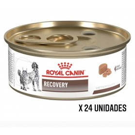 Pack 24 Latas Royal Canin...