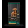 Pro Plan Puppy Large Breed 15 KG