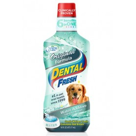 Dental Fresh 503ml