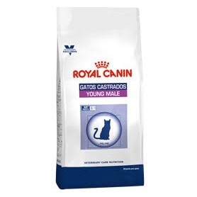 Royal Canin Gatos Castrados Young Male S/O macho 3,5Kg