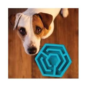 Comedero Interactivo hexagonal G